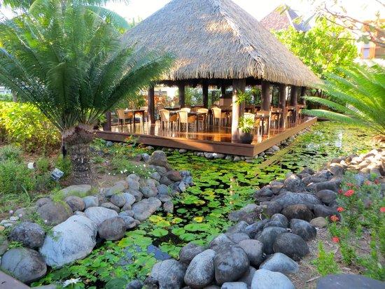 Sofitel Fiji Resort & Spa: Restaurant