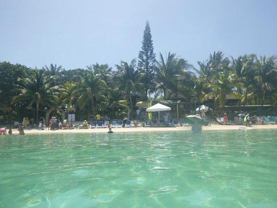 Island Marketing Ltd Roatan Cruise Excursions - Tours: Looking back at Bananaramma from beach