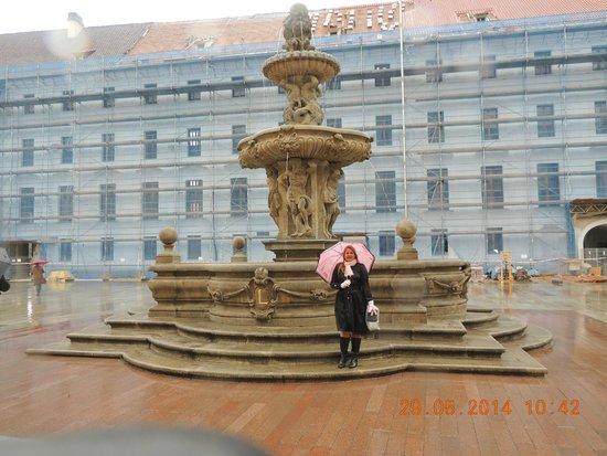 Hotel Majestic Plaza Prague: Caminhar