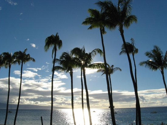 Westin Maui Resort And Spa: Sunshine