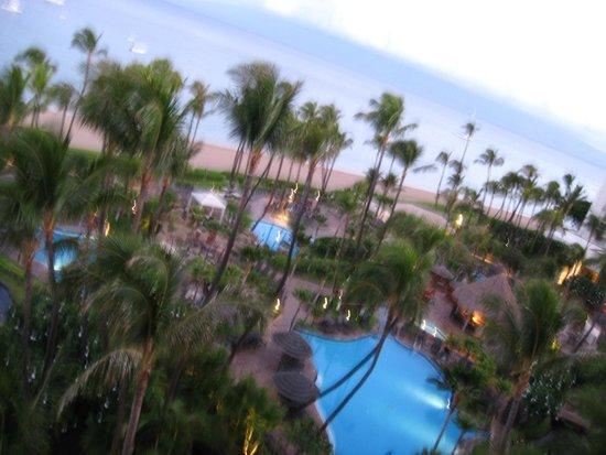 The Westin Maui Resort & Spa: pools