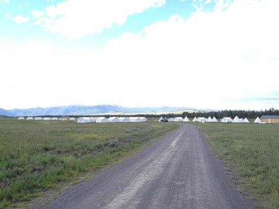 Yellowstone Under Canvas: Drive slowly on the driveway