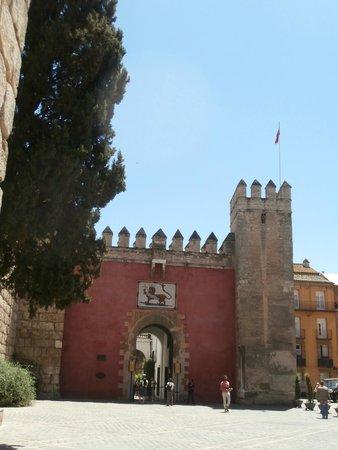 Real Alcázar: ingresso su plaza del triunfo