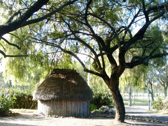 jardin botanico quito picture of jardin botanico de