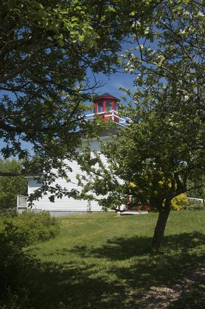 Burntcoat Head Park: Lighthouse through the orchard