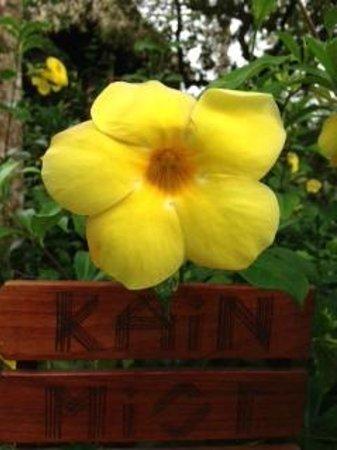 Gaia Riverlodge : Flower
