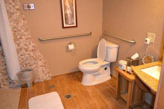 High Peaks Resort: Part of the bathroom, it was huge!