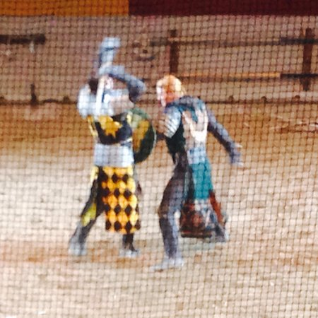 Medieval Times Dinner & Tournament : Fight to the death