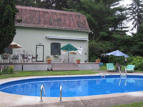 18 Vine Inn & Carriage House: The pool and patio