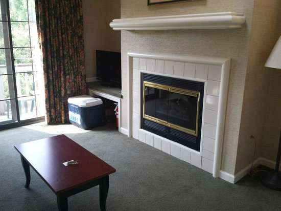 Fernwood Resort: Living room fireplace