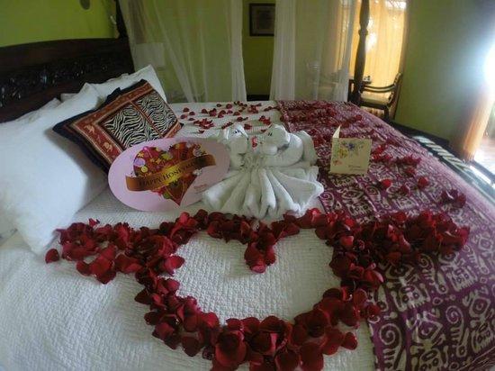 Nayara Resort Spa & Gardens: Honeymoon surprise!