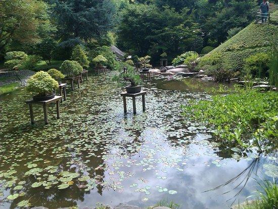 Albert Kahn Musee: Japanese Garden 2 - Picture of Albert ...