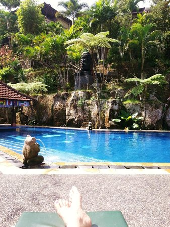 Bali Spirit Hotel and Spa: Bali Spirit pool ... lovey oasis