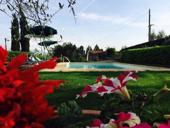 Az.Agr. La Vecchia Camera: Un tuffo in piscina