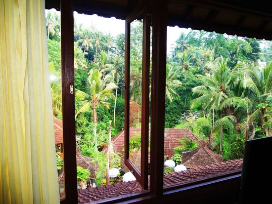 Bali Spirit Hotel and Spa: Room With A View