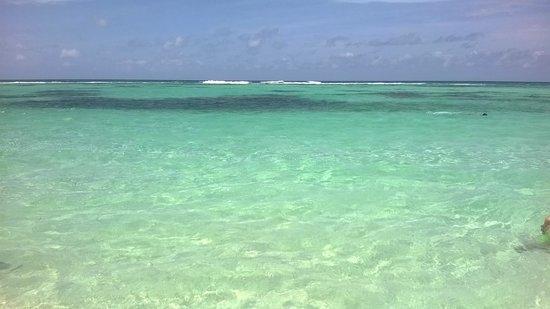 Viva Wyndham Dominicus Palace: hola..caraibi...(luglio 2014)