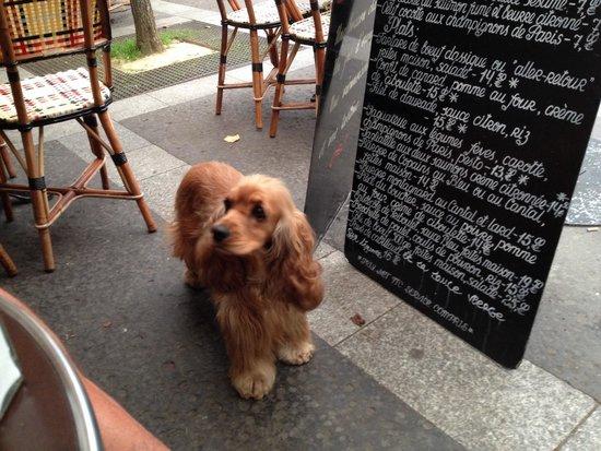 Cafe Arthur et Juliette: Mon copain Milou.