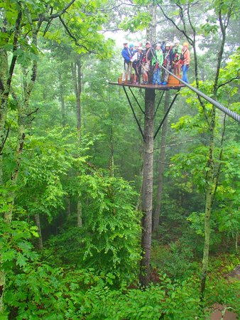 Sky Valley Zip Tours: Entire group