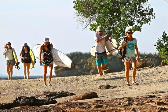 Las Plumerias Lodge and Surf: Looking for waves