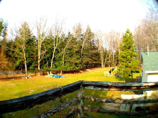 Maple Lane Resort: View from Upper Carriage House