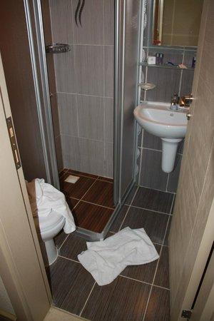 Q Hotel Istanbul: Малюсенькая ванная