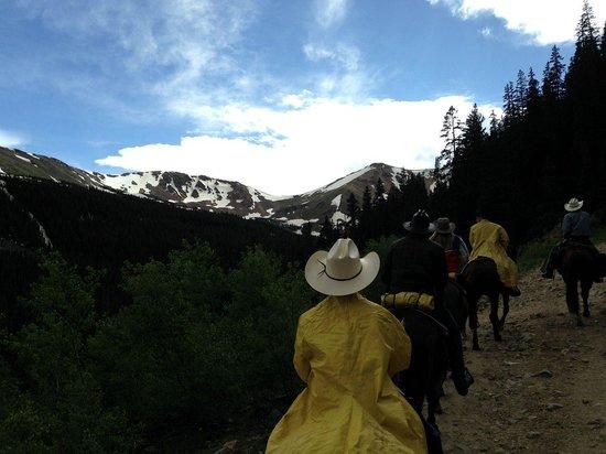 Tumbling River Ranch: Snowcaps!