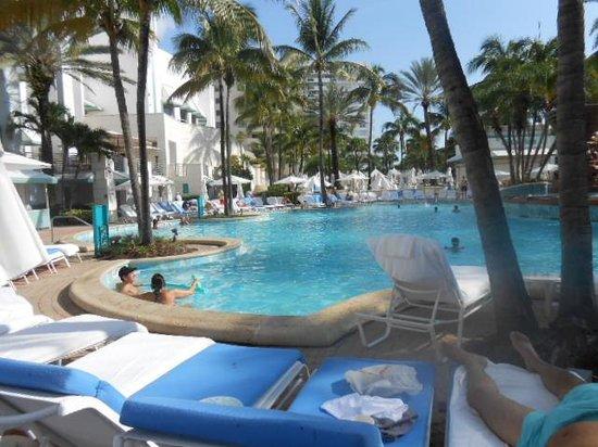 Loews Miami Beach Hotel: The beautiful pool!