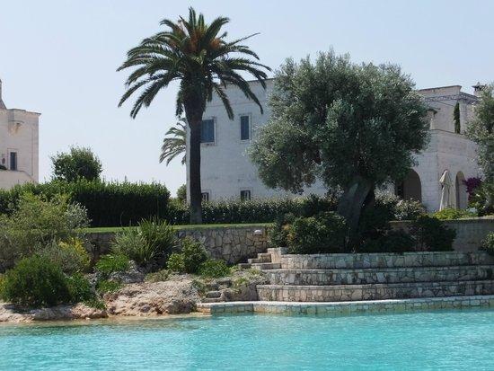 Masseria San Domenico: View from the pool