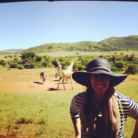 Ekala Eco Tours: Pilanesberg National Park Safari