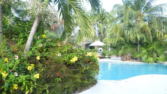 Royal West Indies Resort : Quiet pool at RWI