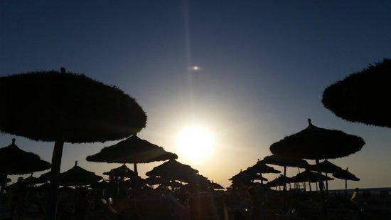 Seabel Rym Beach: Le soleil en fin d'après midi !