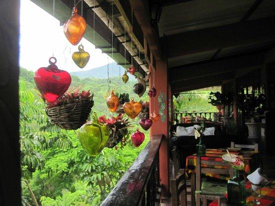 Vallarta Botanical Gardens: at the restaurant, brilliant