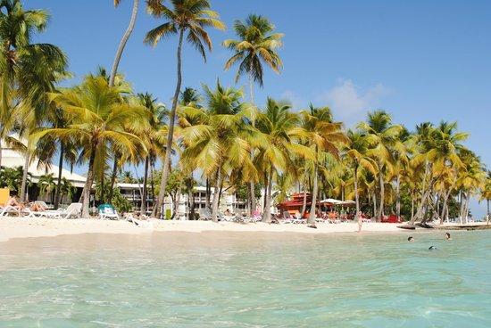 Club Med La Caravelle: plage de rêve
