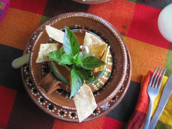 Vallarta Botanical Gardens: tortilla soup!!