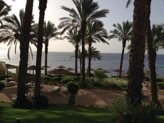 Grand Rotana Resort & Spa : from our room