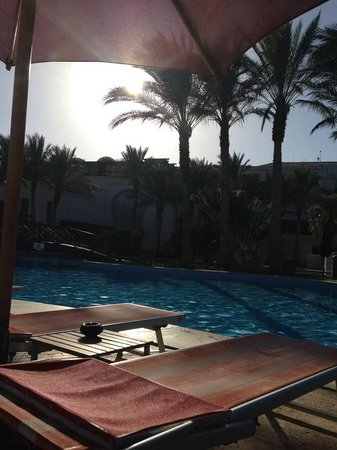Grand Rotana Resort & Spa : pool with hotel in background