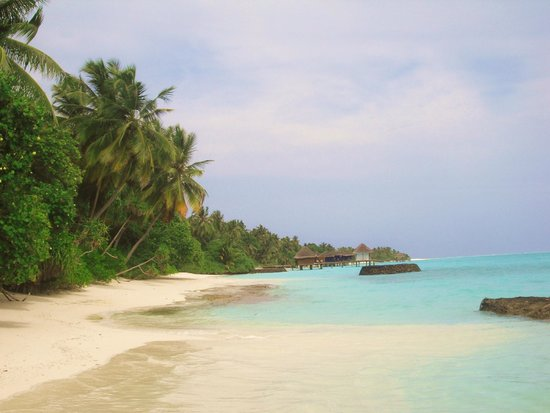Kuramathi Island Resort: Visuale sulla spiaggia