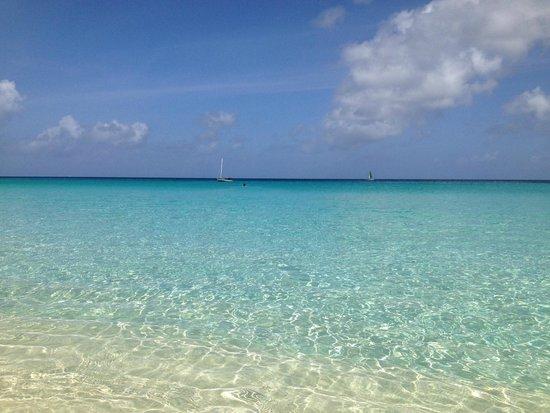 Carimar Beach Club : beach