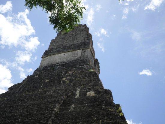 Tempel I: Gran jaguar vista trasera