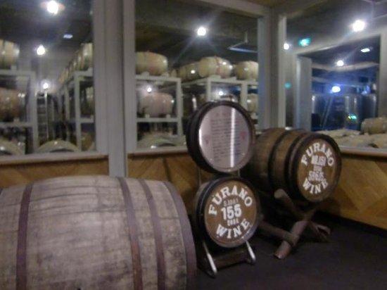 Furano Wine Factory: 見学・・