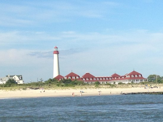 Thundercat Dolphin Watch: Cape May from the boat