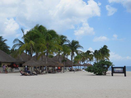 Chankanaab Beach Adventure Park: beach area