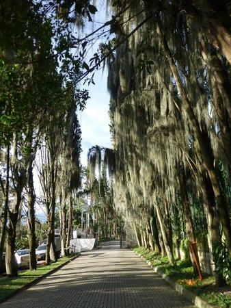 El Castillo Museo y Jardines: Vía de ingreso