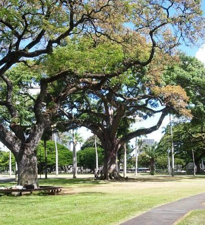 Iolani Palace: Beautiful grounds - lots of shade for picnic...close to bus stop