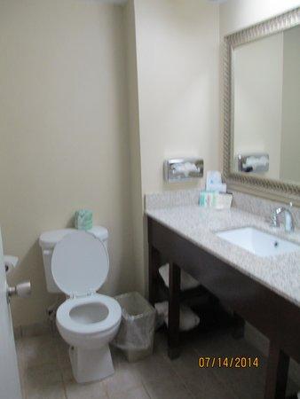 Comfort Inn Petersburg - Fort Lee: Bathroom