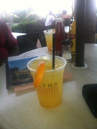 Oceanaire Resort Hotel : Evening Drinks