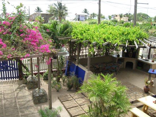 All Seasons Guest House, Ltd.: Courtyard
