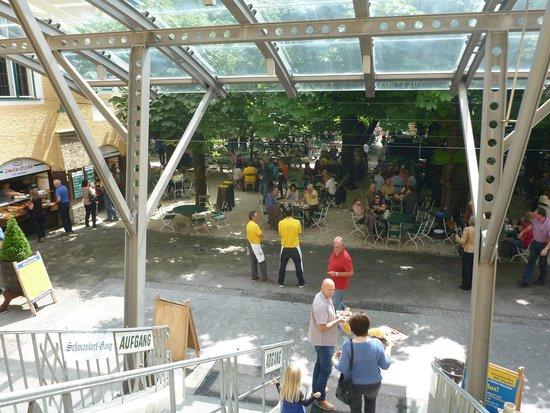 Augustiner Braustubl : beer garden view