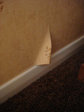 BEST WESTERN Oaklands Hall Hotel: Exec standard?