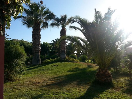 SunConnect Zorbas Village : Ogród Zorbas